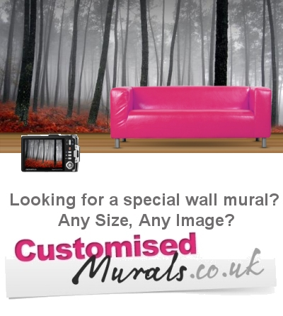 Customised murals made to any size from any image